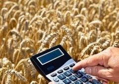Nowy, nieoprocentowany kredyt dla producentów rolnych